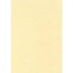 GPV paquet de 40 enveloppes recyclées extra Blanches Erapure, format DL 110x220mm fenetre 45x100mm 80g