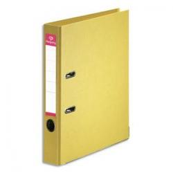 GPV Boîte de 1000 enveloppes 114x229mm Blanches fenêtre 45x100 80g