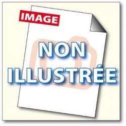 INAPA Ramette 250 feuilles papier Blanc brillant PRO DESIGN GLOSS A3 170G CIE 150